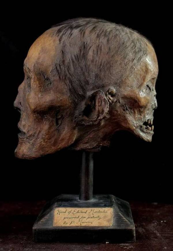 Reproducción del cráneo de Edward Mordrake