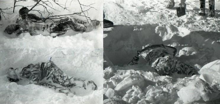 Cuerpos de Dyatlov, kolomogorova y Slobodin