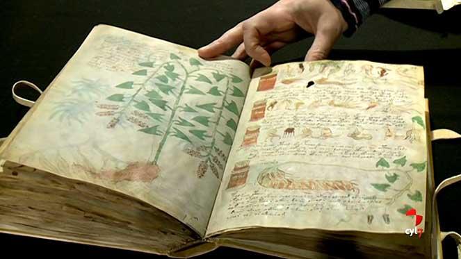 El Manuscrito Voynich siendo analizado