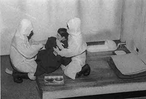 Experimentos de la Unidad 731