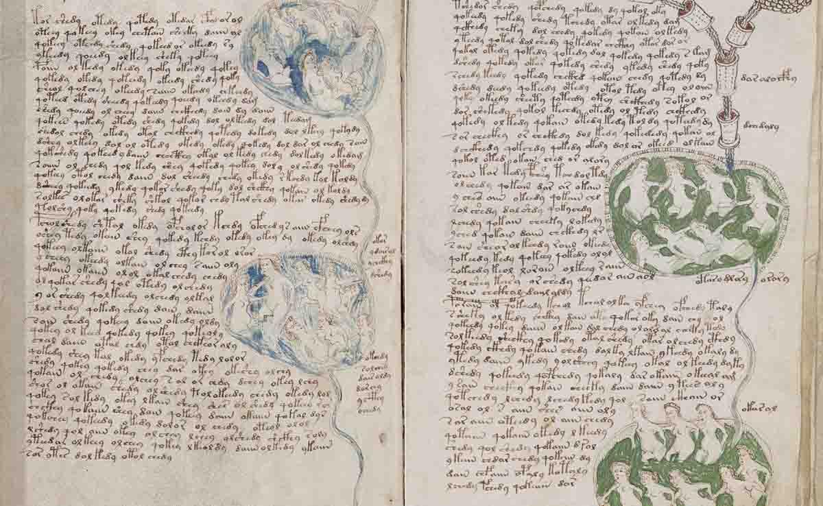 Páginas el Manuscrito Voynich con texto y diversas ilustraciones