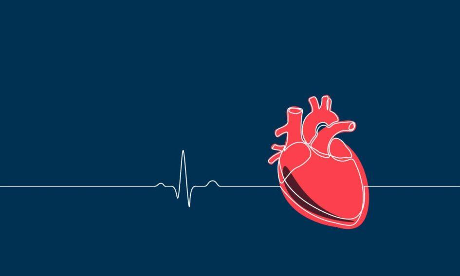 El día en que España gestionó 19 donantes de órganos y 38 trasplantes den 24 horas