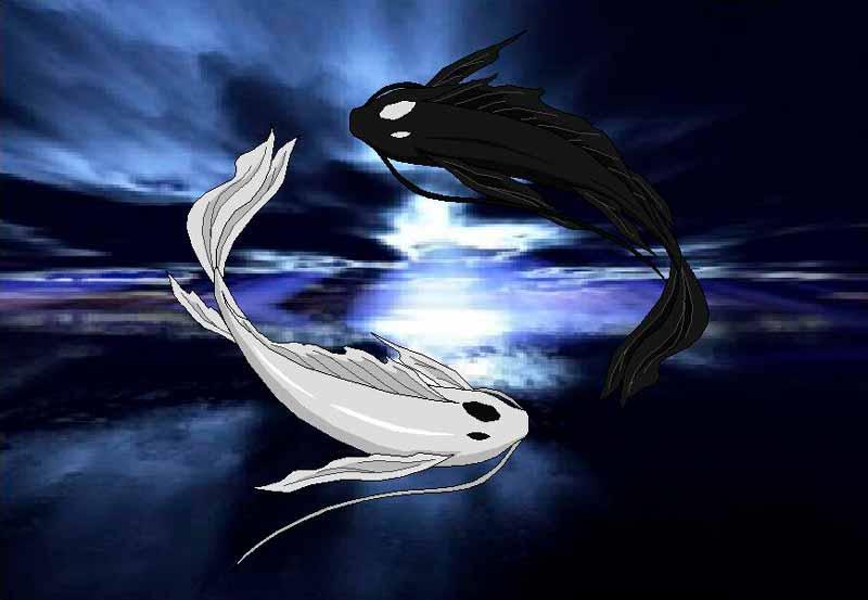 El Ying y el Yang representado con el balance de los peces koi en la serie Avatar