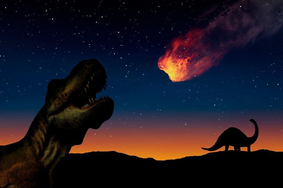 Los 5 eventos de extinción masiva en la Tierra