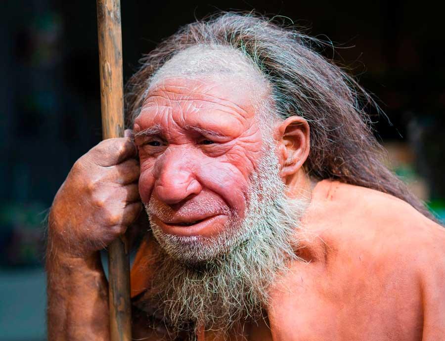 La razón de la desaparición de los neandertales
