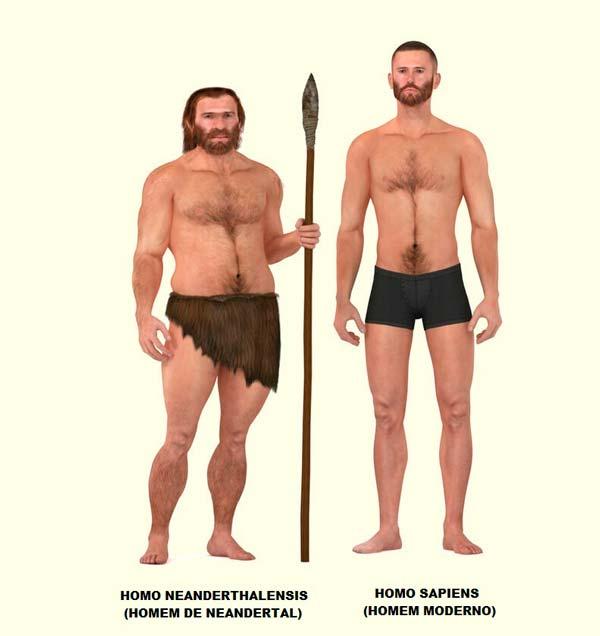 Representación de las diferencias físicas entre neandertales y homo sapiens