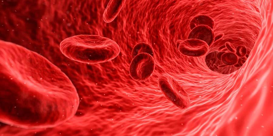 El grupo sanguíneo más raro del mundo, la sangre dorada