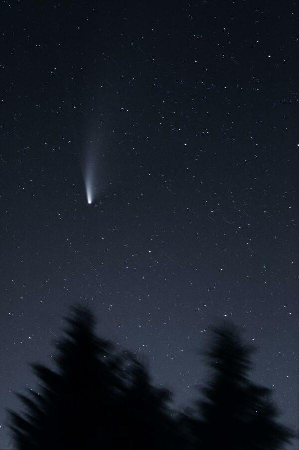 La casualidad de Ann Hodges, la única persona en el mundo golpeada por un meteorito